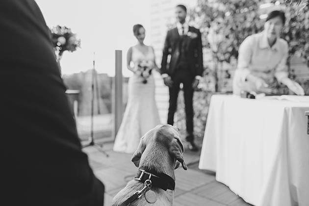 spoke-club-toronto-wedding-44
