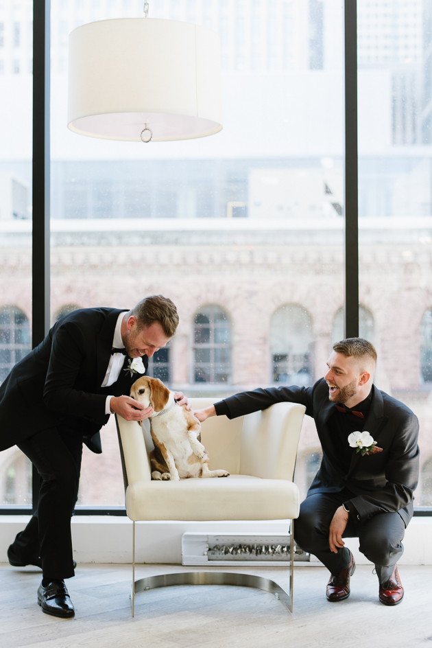 grooms playing with their dog on a wedding day