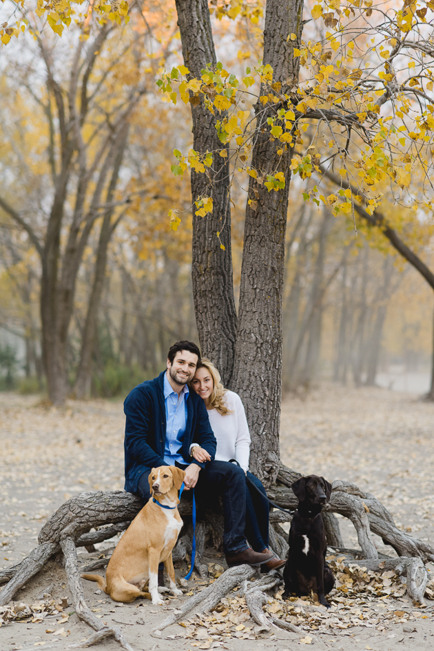 bride and groom and their two dogs catching a rest during the engagement photo shoot