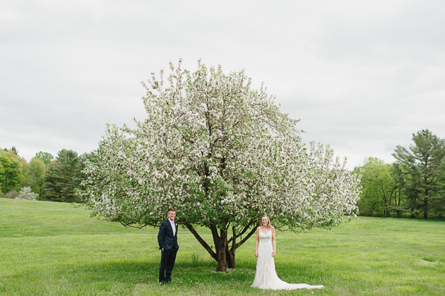 A brid and groom posing underneath a blooming apple tree during their Muskoka wedding