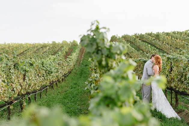 Beautiful vineyard rows at the Ravine Winery wedding