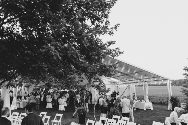 Surprise wedding at a backyard photography