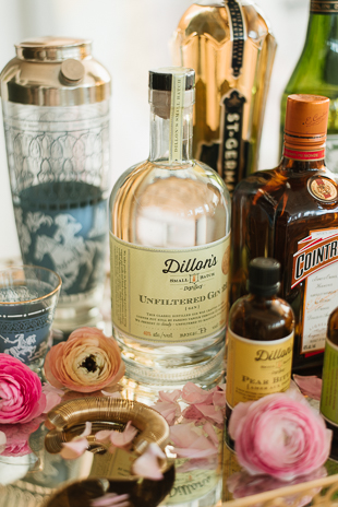 Summer gin cocktails by Dillions Distillery